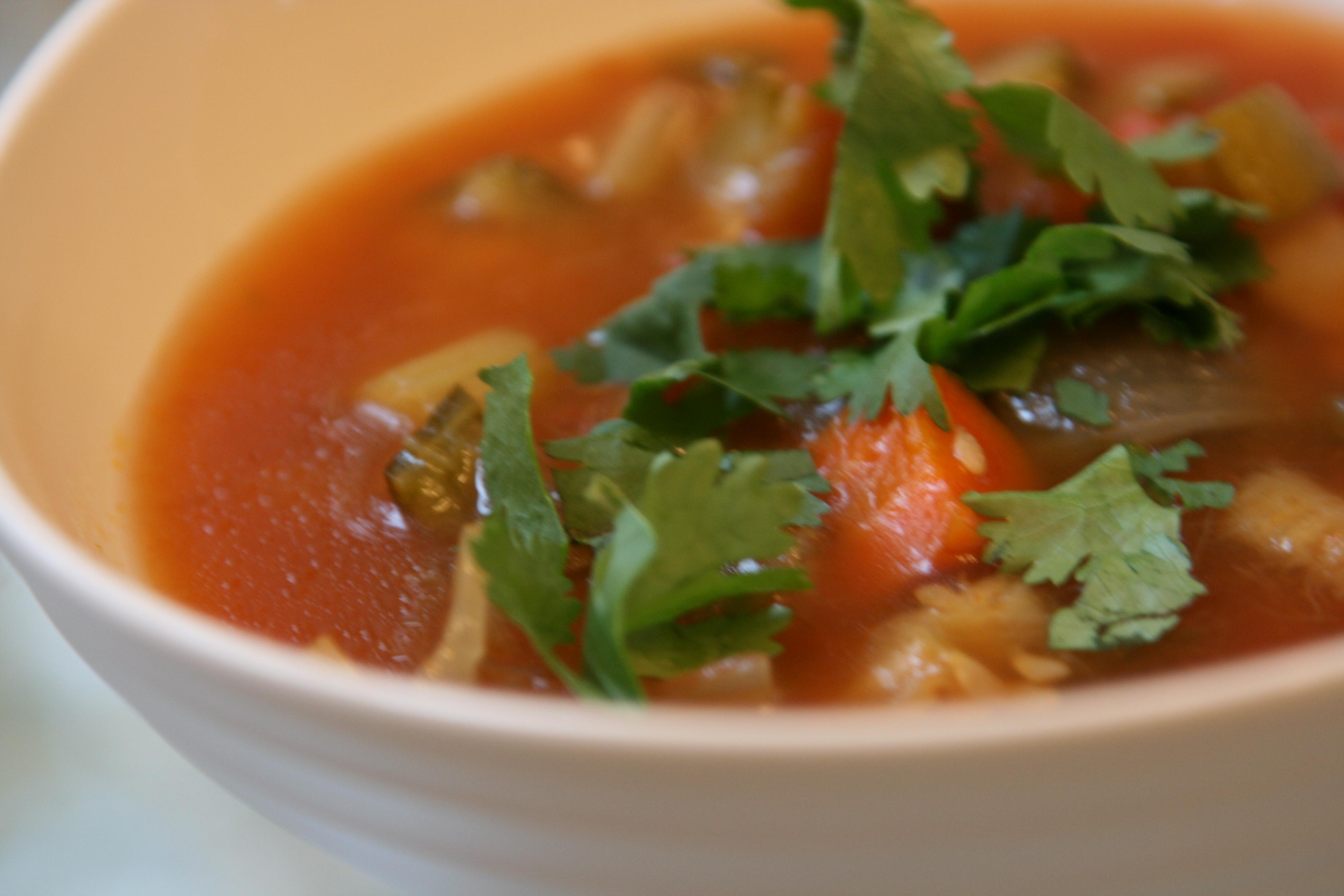 crock pot garden vegetable soup basal evolution